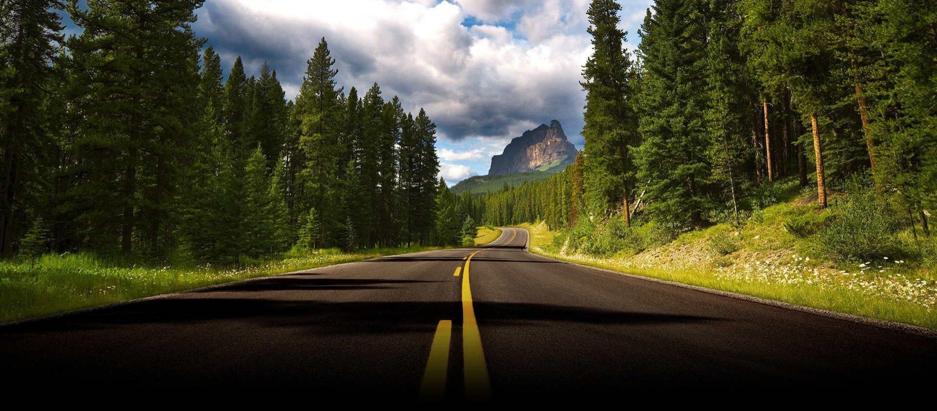 Veg og Trafikk